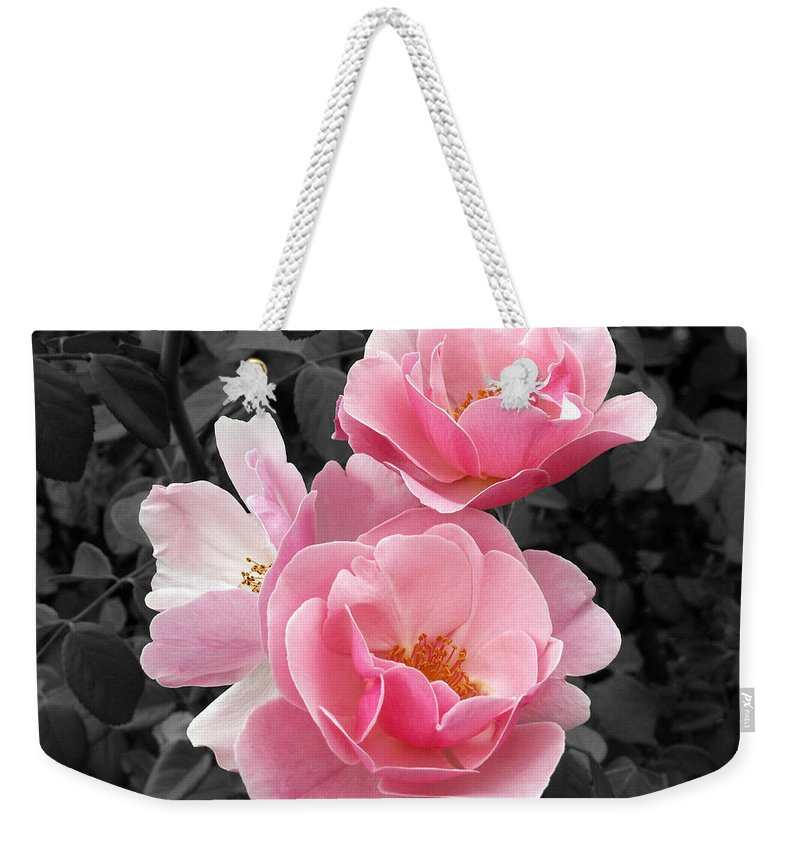 Flower Weekender Tote Bag featuring the photograph Popping Pink Roses by Amy Fose