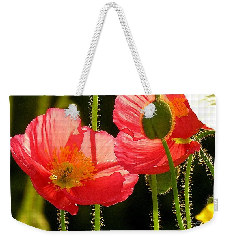 Poppy Weekender Tote Bag featuring the photograph Poppy by Diane Greco-Lesser