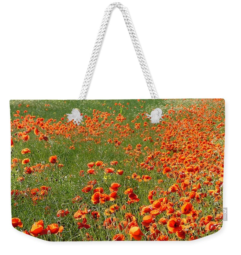 Poppy Weekender Tote Bag featuring the photograph Poppy Field by Bob Kemp