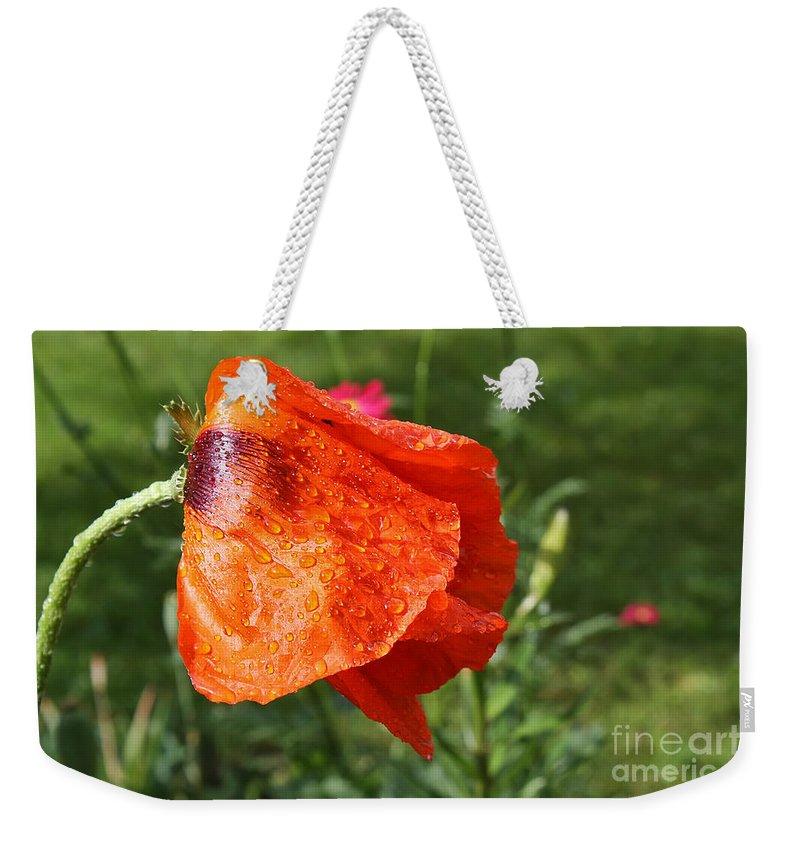 Flower Weekender Tote Bag featuring the photograph Red Poppy II by Teresa Zieba