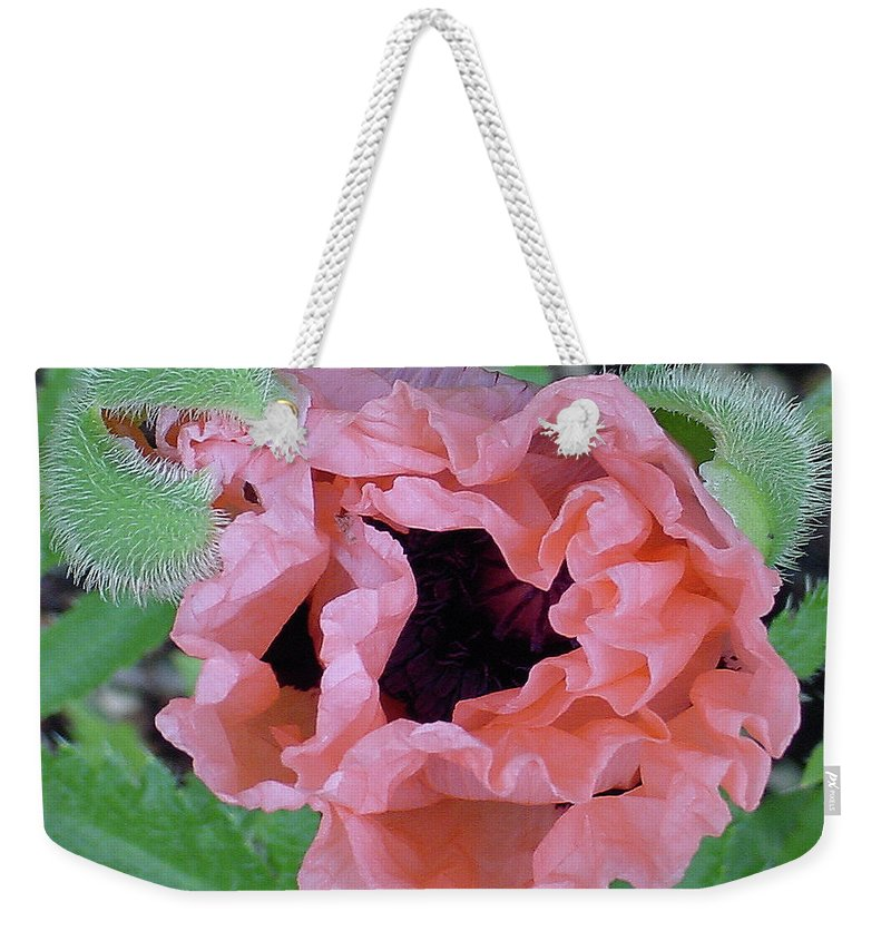 Center Weekender Tote Bag featuring the photograph Poppy Opening - 2 by Shirley Heyn