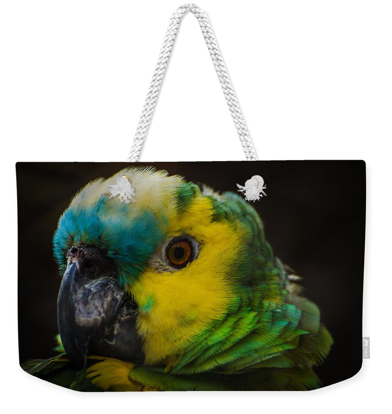 Bird Weekender Tote Bag featuring the photograph Portrait Of A Blue-fronted Parrot by Constance Puttkemery
