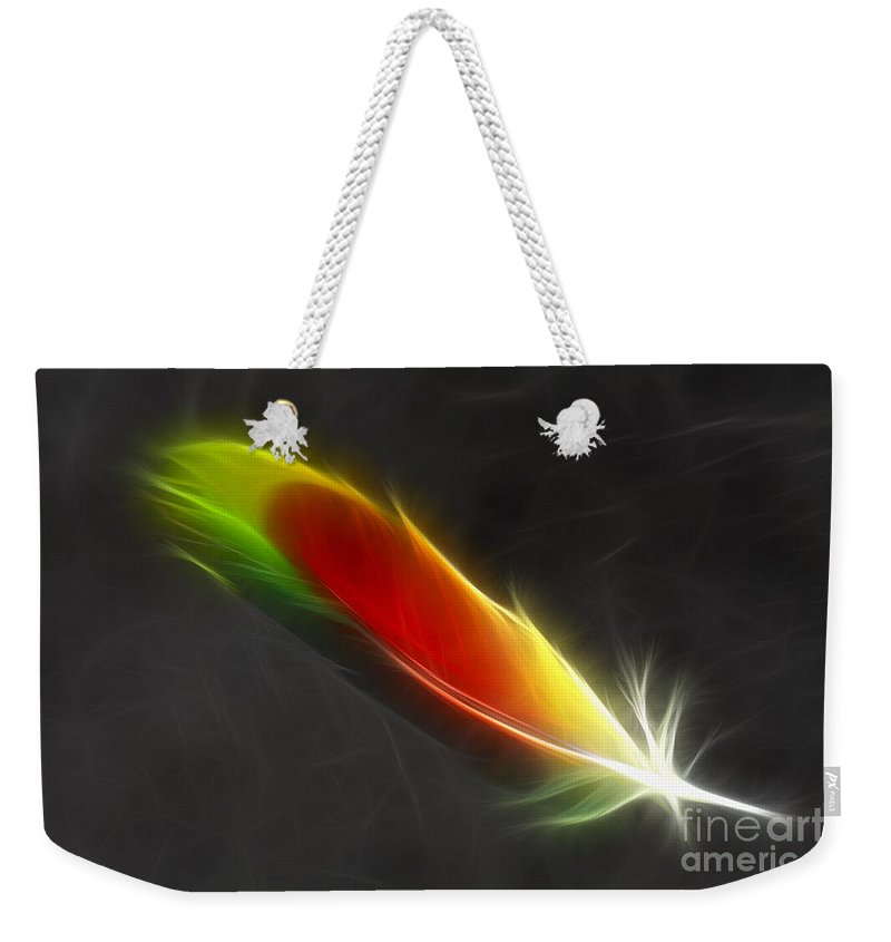 Feather Weekender Tote Bag featuring the photograph Portrait Of A Feather by Deborah Benoit