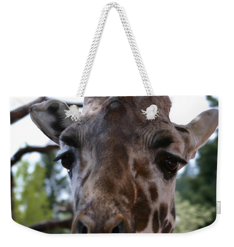 Giraffe Weekender Tote Bag featuring the photograph Portrait Of A Giraffe by Anthony Jones