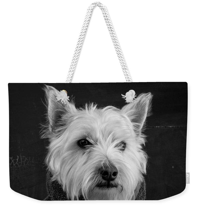 Dogs Weekender Tote Bags