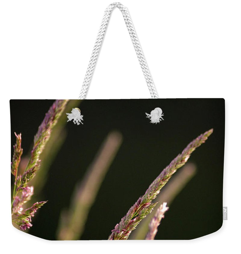 Background Weekender Tote Bag featuring the photograph Poster Grass by Alan Look