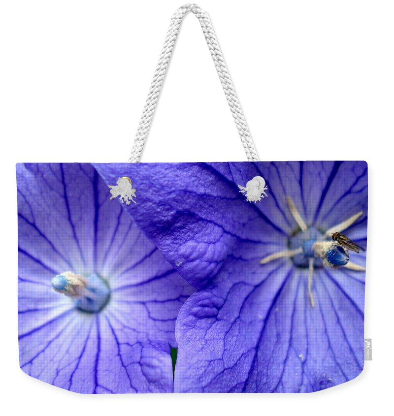 Flowers Weekender Tote Bag featuring the photograph Powder 2 by Nelson F Martinez