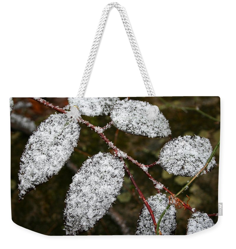 Winter Season Cold Snow Tree Branch Leaf Leaves White Green Frosted Powder Weekender Tote Bag featuring the photograph Powdered by Andrei Shliakhau