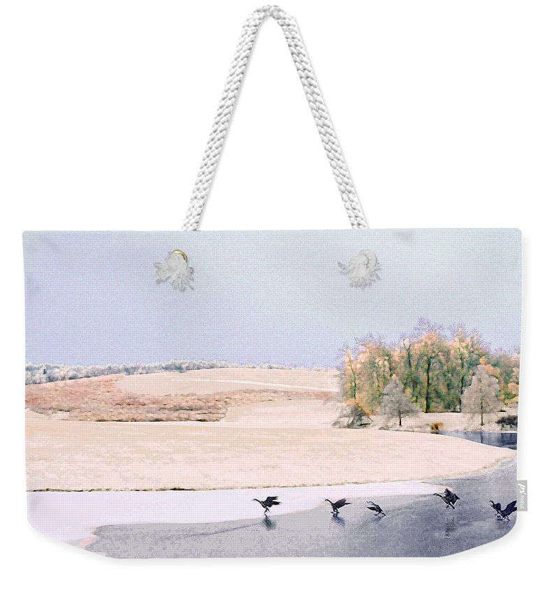 Landscape Weekender Tote Bag featuring the photograph Powell Gardens In Winter by Steve Karol