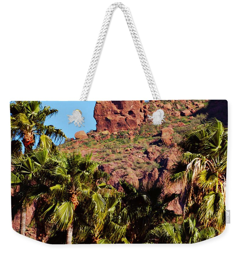 Mountain Weekender Tote Bag featuring the photograph Praying Monk by Jill Reger