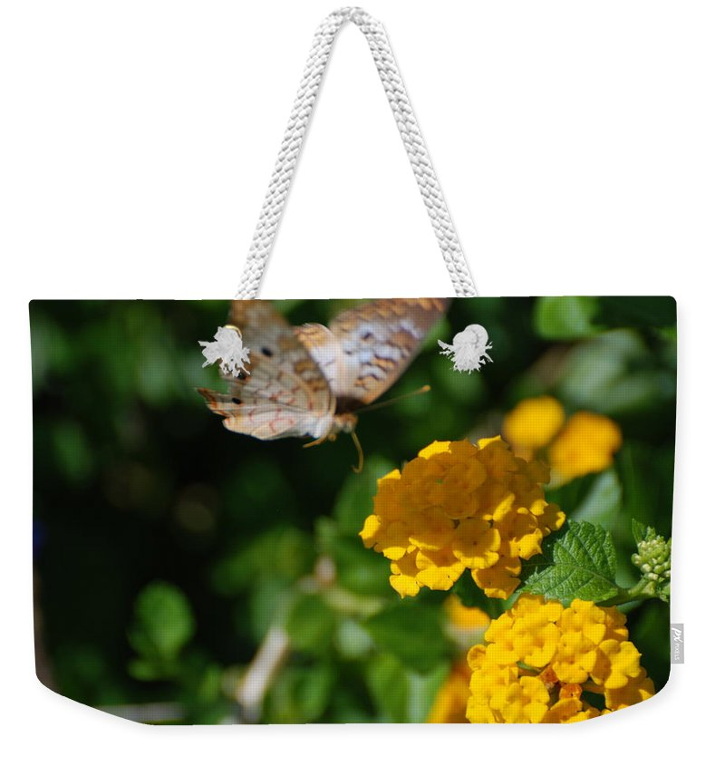 Butterfly Weekender Tote Bag featuring the photograph Pre Landing by Rob Hans