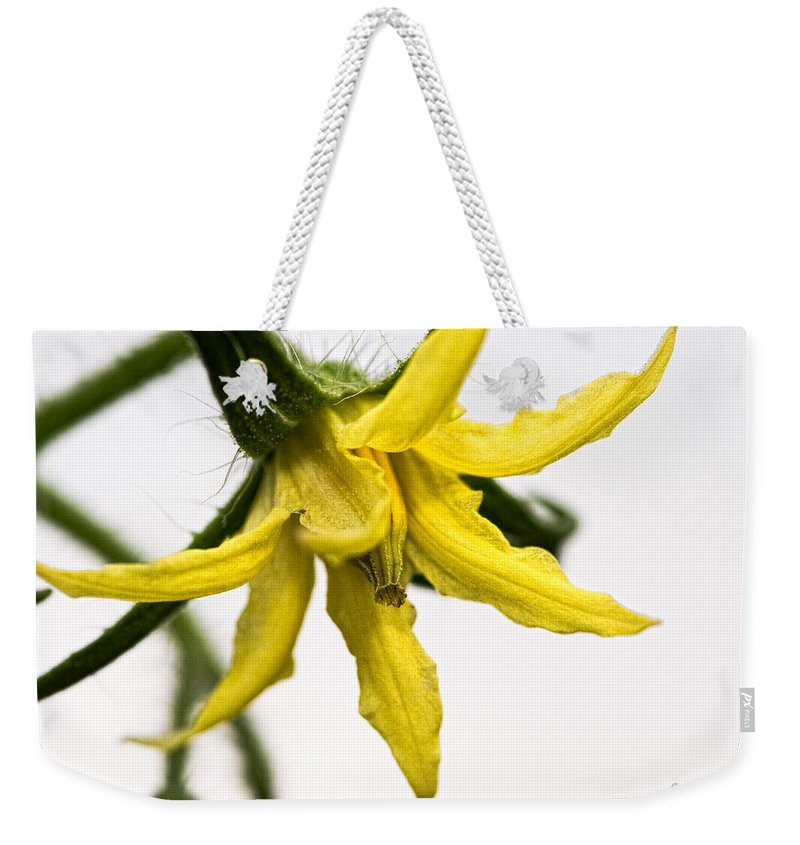 Tomato Weekender Tote Bag featuring the photograph Pre-tomato by Christopher Holmes