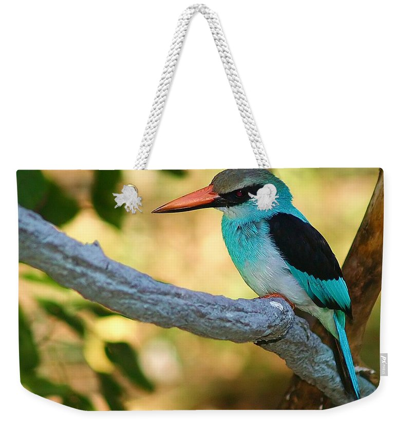 Kingfisher Weekender Tote Bag featuring the photograph Pretty Bird by Gaby Swanson