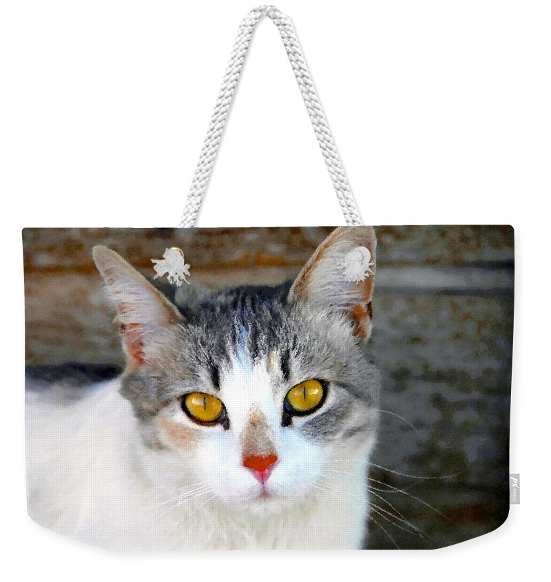 Cat Weekender Tote Bag featuring the painting Pretty Kitty by David Lee Thompson
