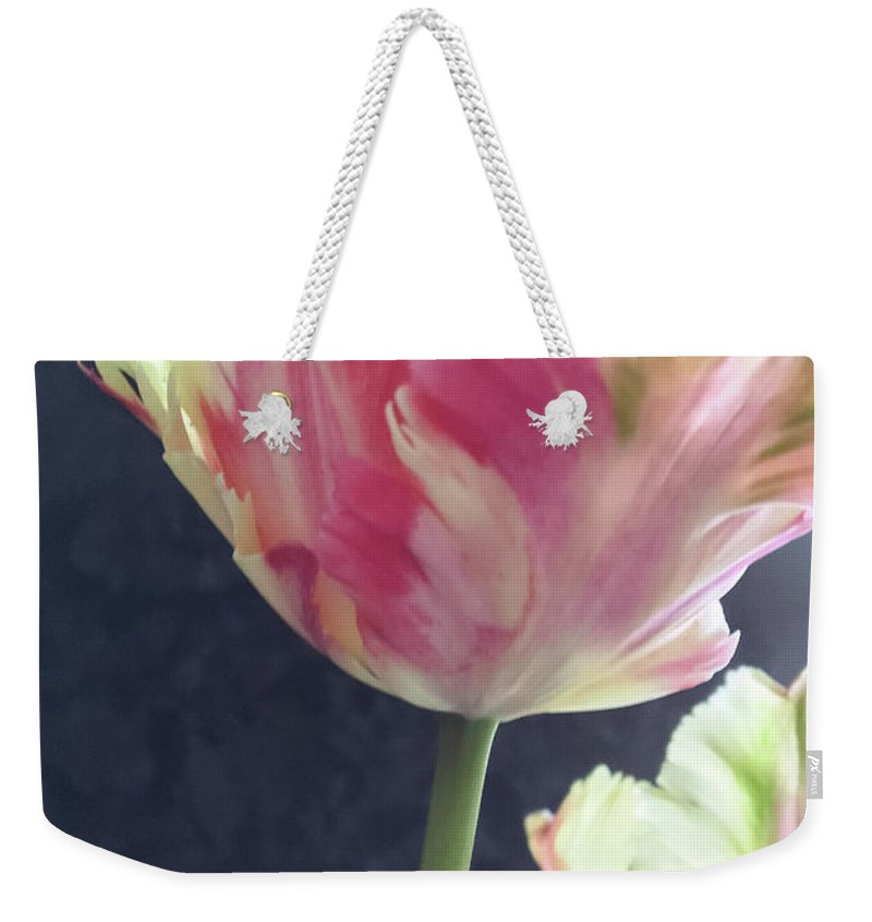 Flora Weekender Tote Bag featuring the photograph Pretty Parrot Tulip 2 by Jill Greenaway
