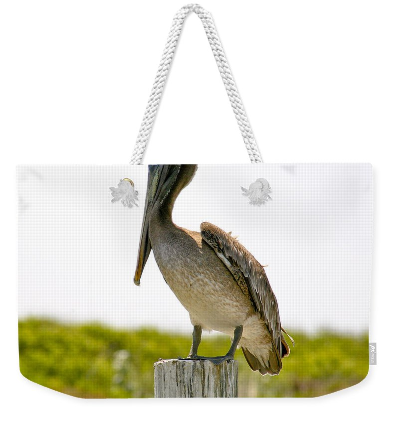 Pelican Weekender Tote Bag featuring the photograph Pretty Pelican by Marilyn Hunt