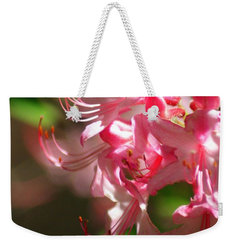 Flowers Weekender Tote Bag featuring the photograph Pretty Pink by Marty Koch