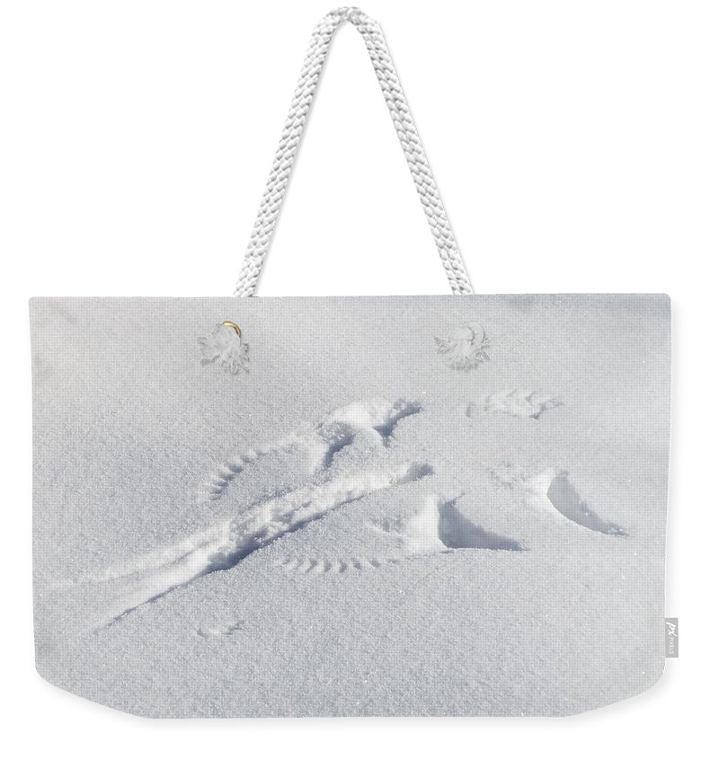Perfect Weekender Tote Bag featuring the photograph Preying Snow Angel by LeAnne Perry