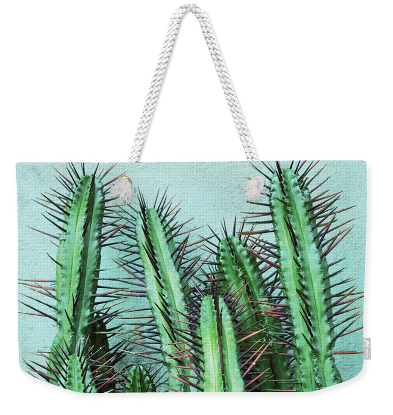 Prick Weekender Tote Bag featuring the mixed media Prick Cactus by Emanuela Carratoni