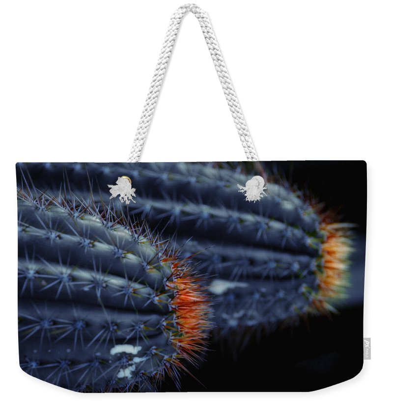 Cactus Weekender Tote Bag featuring the photograph Prickly Hooters by Donna Blackhall