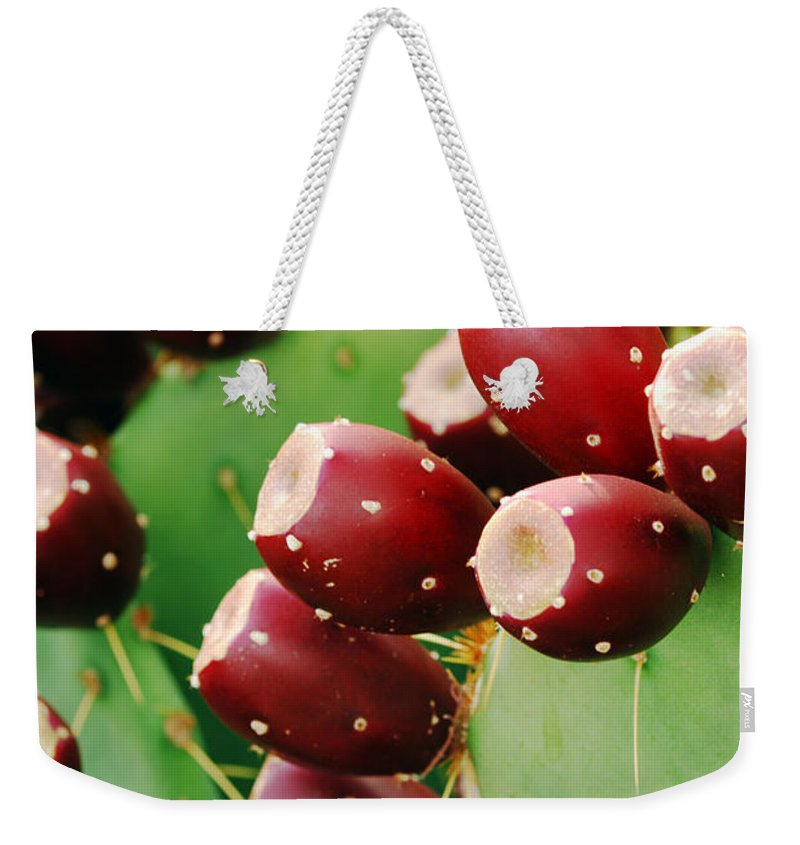 Cactus Weekender Tote Bag featuring the photograph Prickly Pear Fruit by Jill Reger
