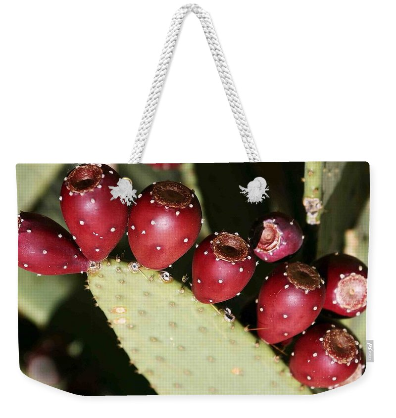 Plant Weekender Tote Bag featuring the photograph Prickly Pear-jerome Arizona by Nelson Strong