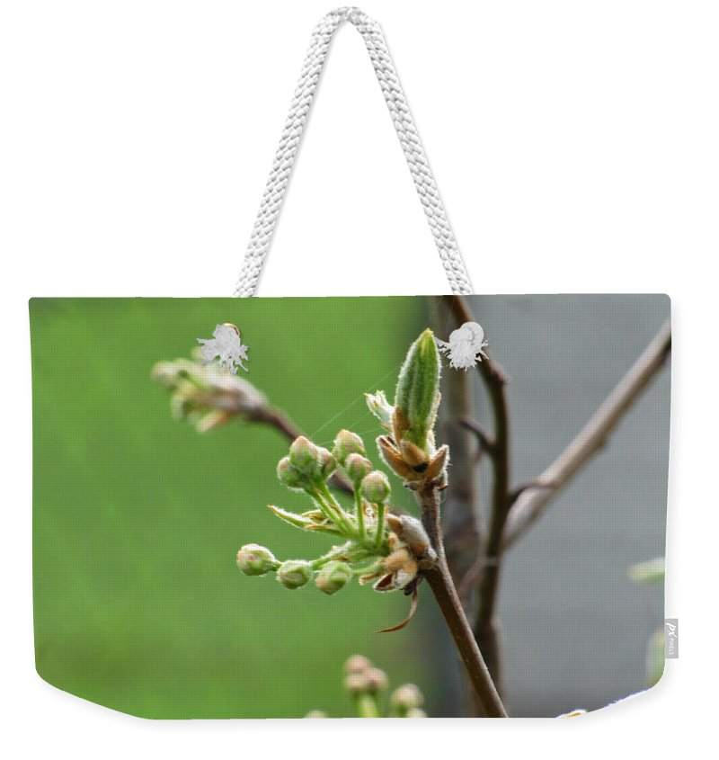 Blooming Weekender Tote Bag featuring the photograph Prosperity Is Welcomed by Jessica Tolemy