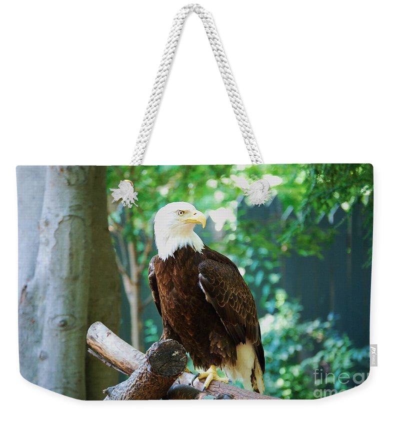 Wildlife Weekender Tote Bag featuring the photograph Proud Eagle by Eric Liller
