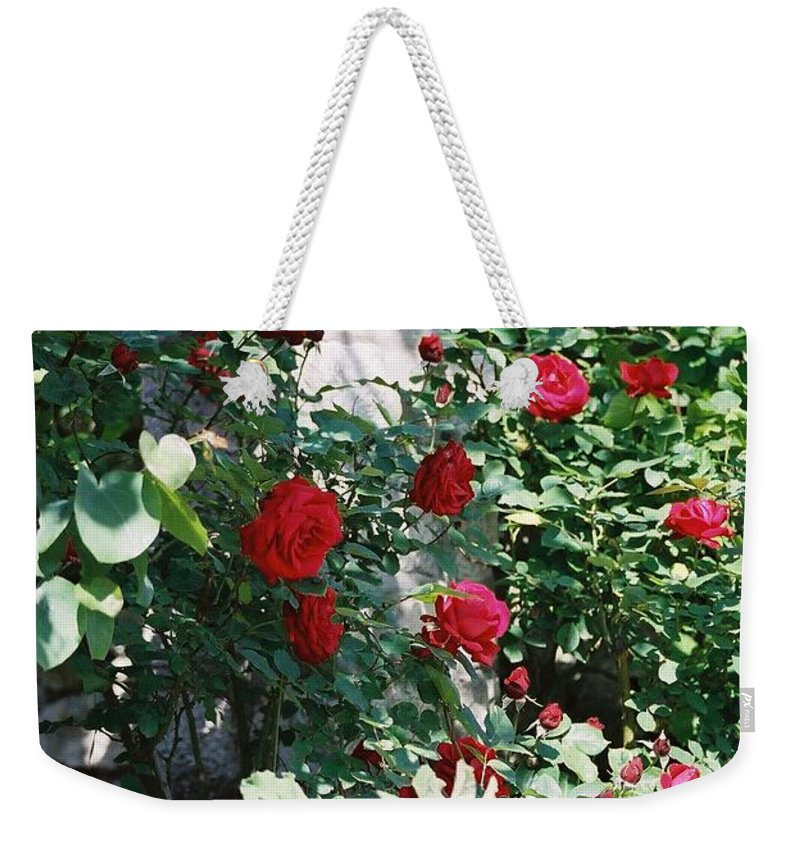 Floral Weekender Tote Bag featuring the photograph Provence Red Roses by Nadine Rippelmeyer