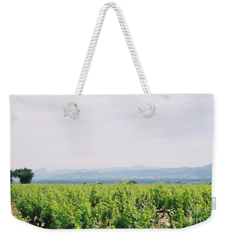 France Weekender Tote Bag featuring the photograph Provence Spring Vineyard by Nadine Rippelmeyer