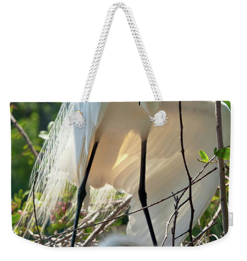 Birds Weekender Tote Bag featuring the photograph Providing A Little Shade by Christopher Holmes