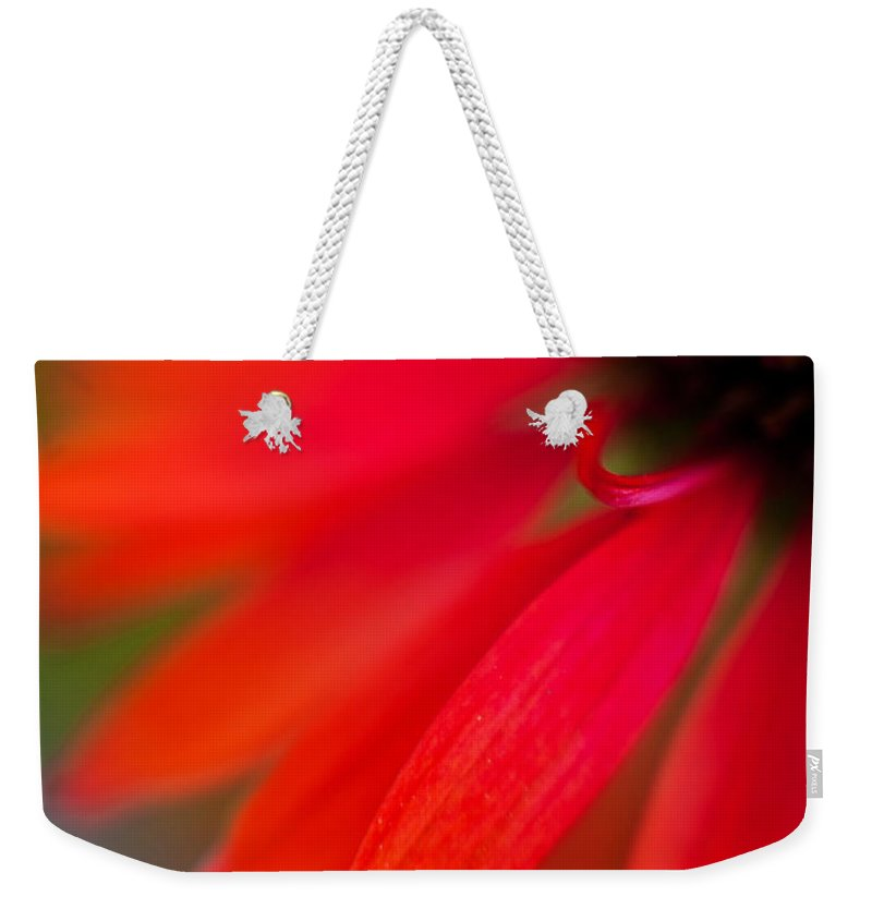 Echinacea Weekender Tote Bag featuring the photograph Psychedlia by Mike Reid