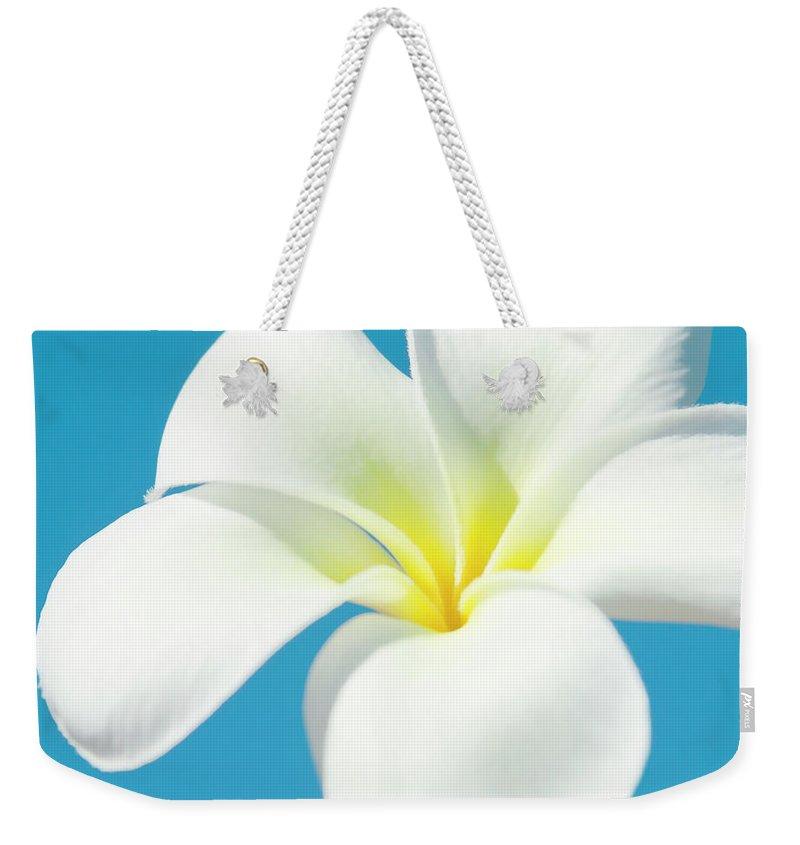 Aloha Weekender Tote Bag featuring the photograph Pua Melia Pakahikahi by Sharon Mau