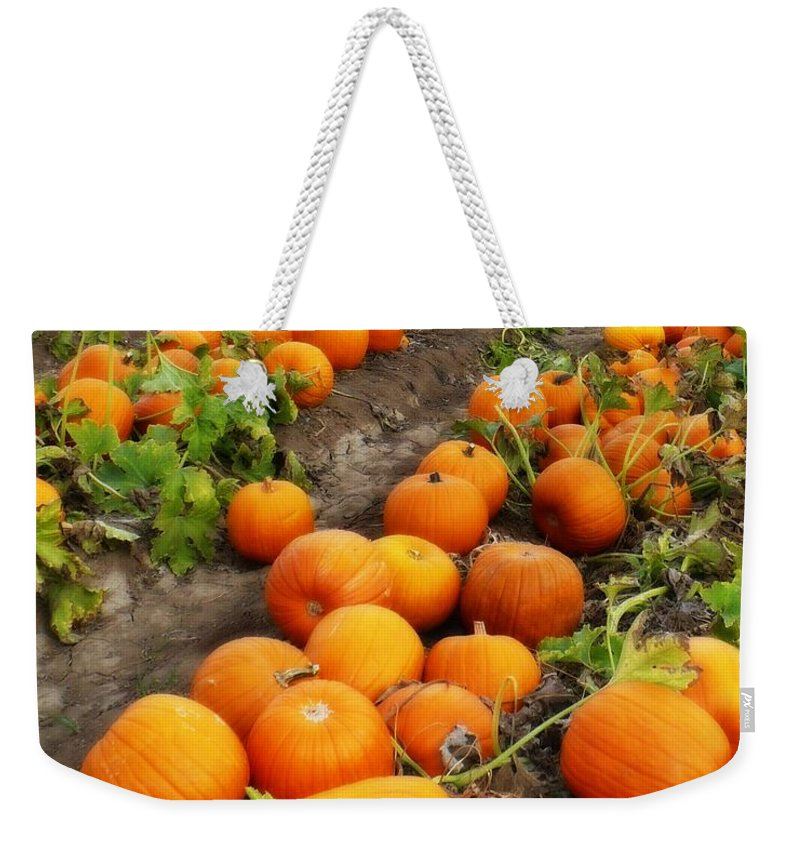 Pumpkin Patch Weekender Tote Bag featuring the photograph Pumpkin Patch by Carol Groenen