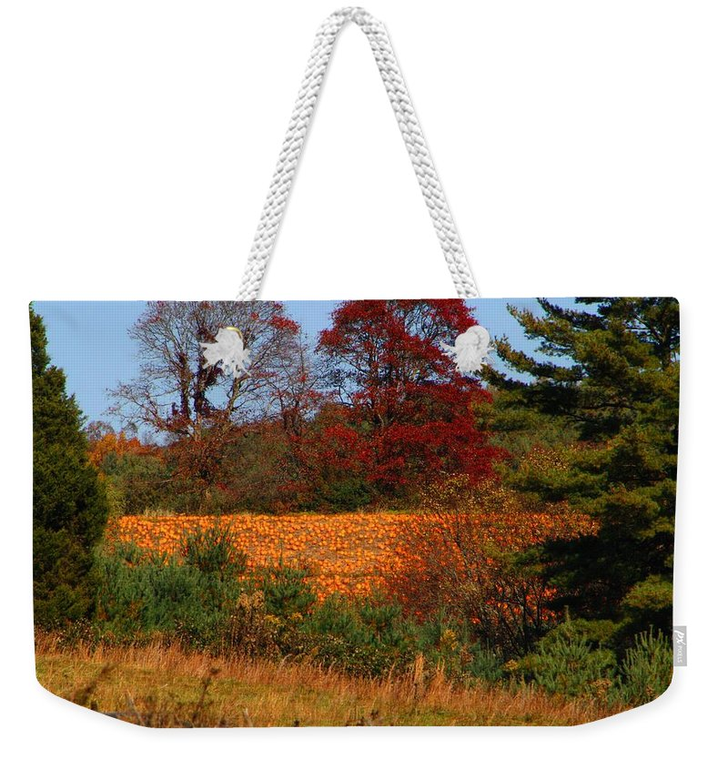 Pumpkins Weekender Tote Bag featuring the photograph Pumpkin Patch by Kathryn Meyer