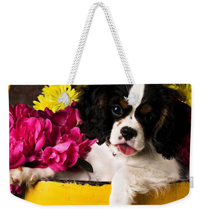 Puppy Dog Cute Doggy Domestic Pup Pet Pedigree Canine Creature Soccer Ball Weekender Tote Bag featuring the photograph Puppy In Yellow Bucket by Garry Gay