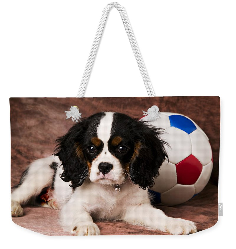 Puppy Dog Cute Doggy Domestic Pup Pet Pedigree Canine Creature Soccer Ball Weekender Tote Bag featuring the photograph Puppy With Ball by Garry Gay