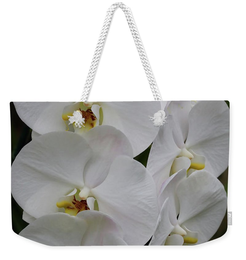 Orchids Weekender Tote Bag featuring the photograph Purity by Deborah Benoit