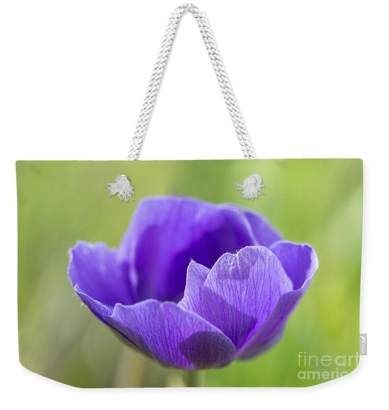 Anemore Weekender Tote Bag featuring the photograph Purple Anemone Flower by Iris Richardson