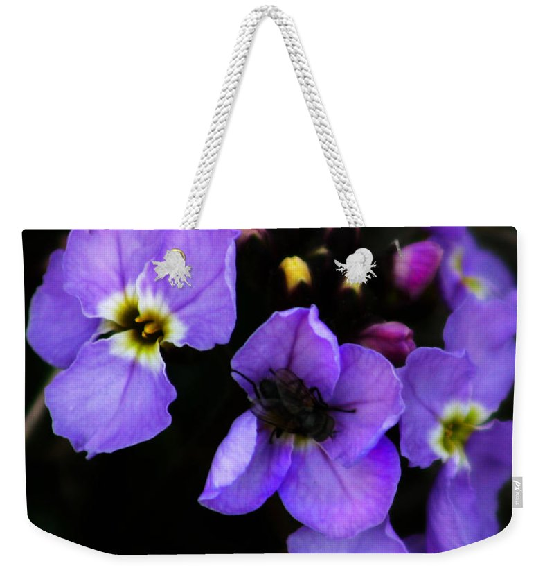 Flowers Weekender Tote Bag featuring the photograph Purple Arctic Wild Flowers by Anthony Jones