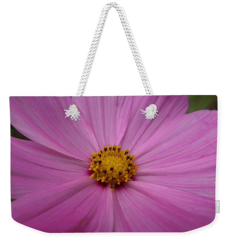 Macro Weekender Tote Bag featuring the photograph Purple Beauty by Alexis Ketner