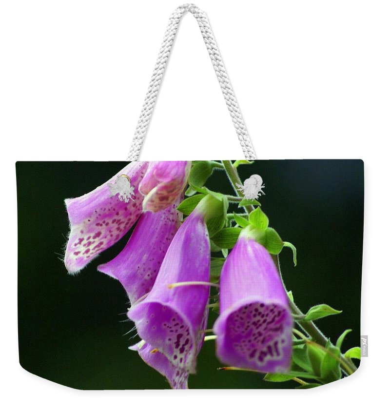 Flowers Weekender Tote Bag featuring the photograph Purple Bells Horizontal by Marty Koch