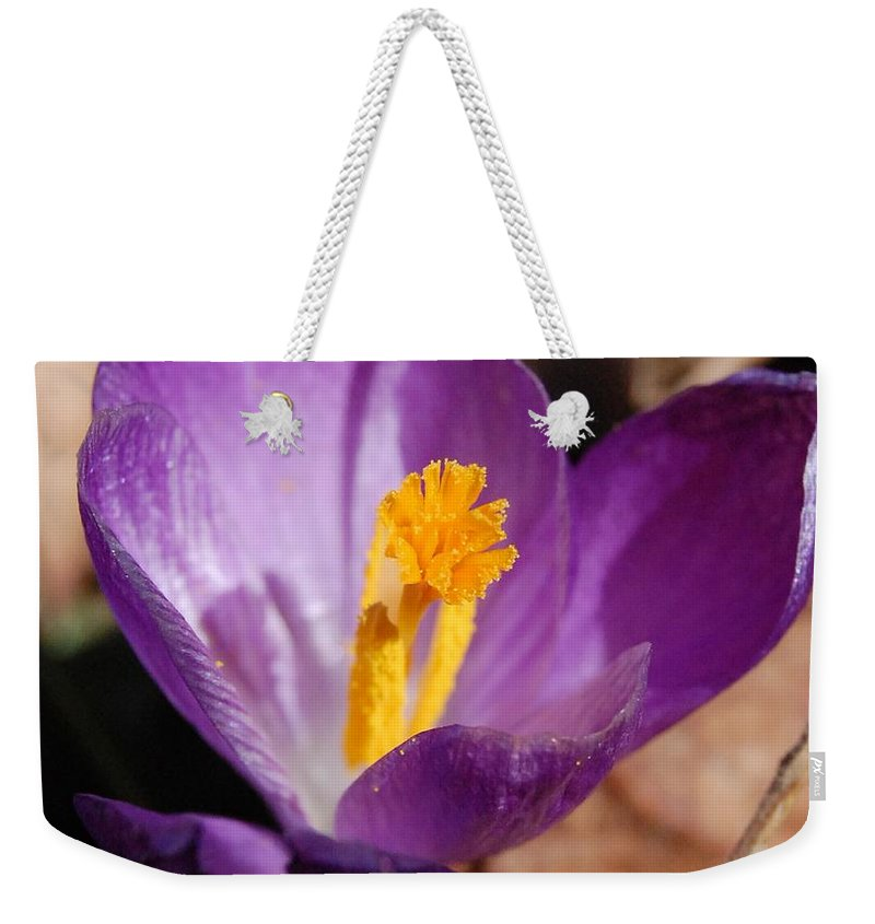 Digital Photography Weekender Tote Bag featuring the photograph Purple Crocus by David Lane