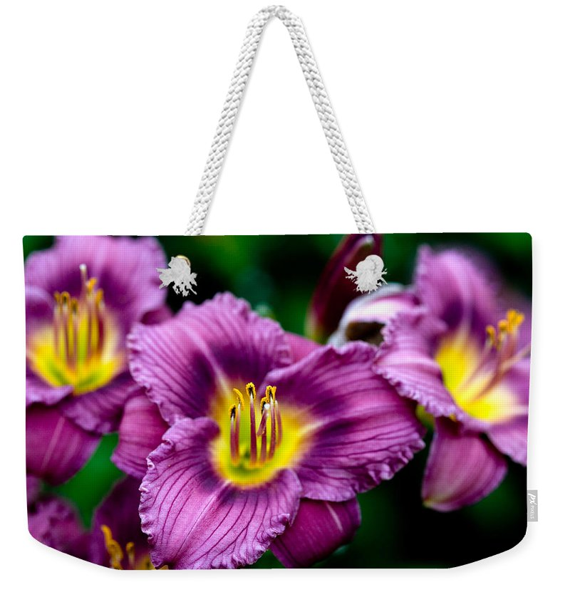 Flower Weekender Tote Bag featuring the photograph Purple Day Lillies by Marilyn Hunt
