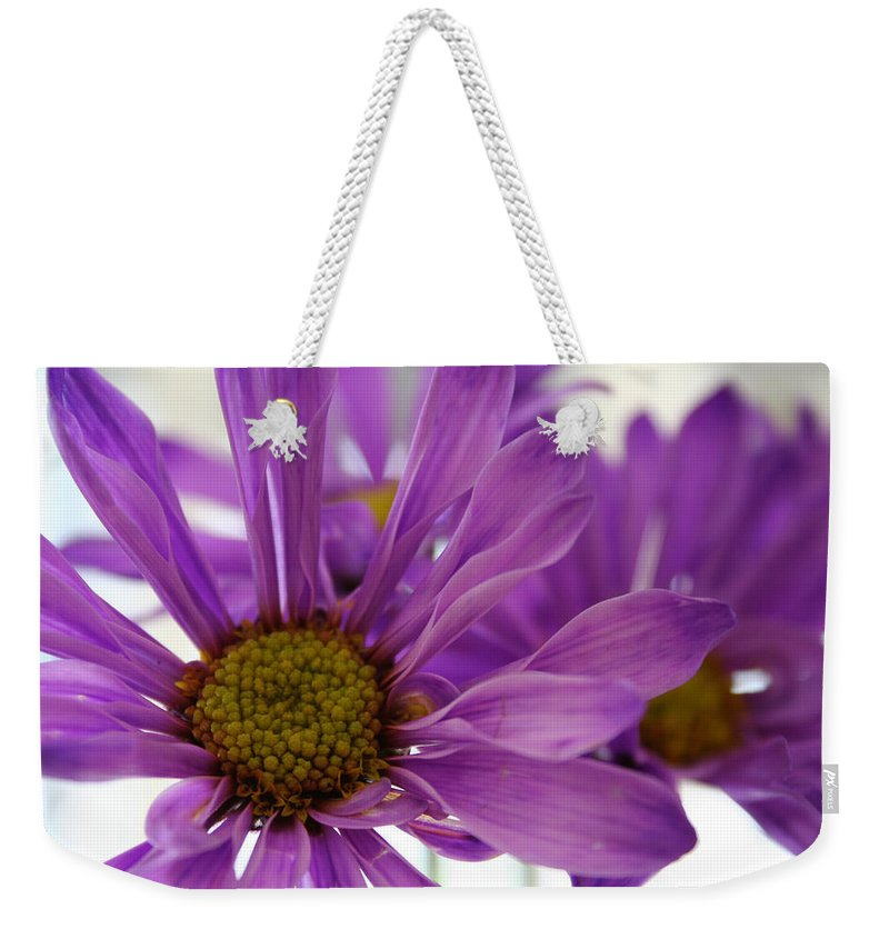 Flowers Purple Macro Daisy Spring Yellow Digital Photography Weekender Tote Bag featuring the photograph Purple Delight by Linda Sannuti