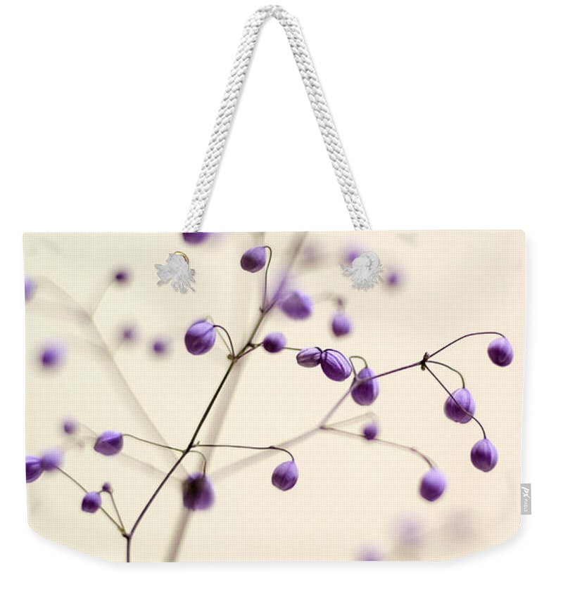 Meadow Rue Weekender Tote Bag featuring the photograph Purple Droplets by Heather Applegate