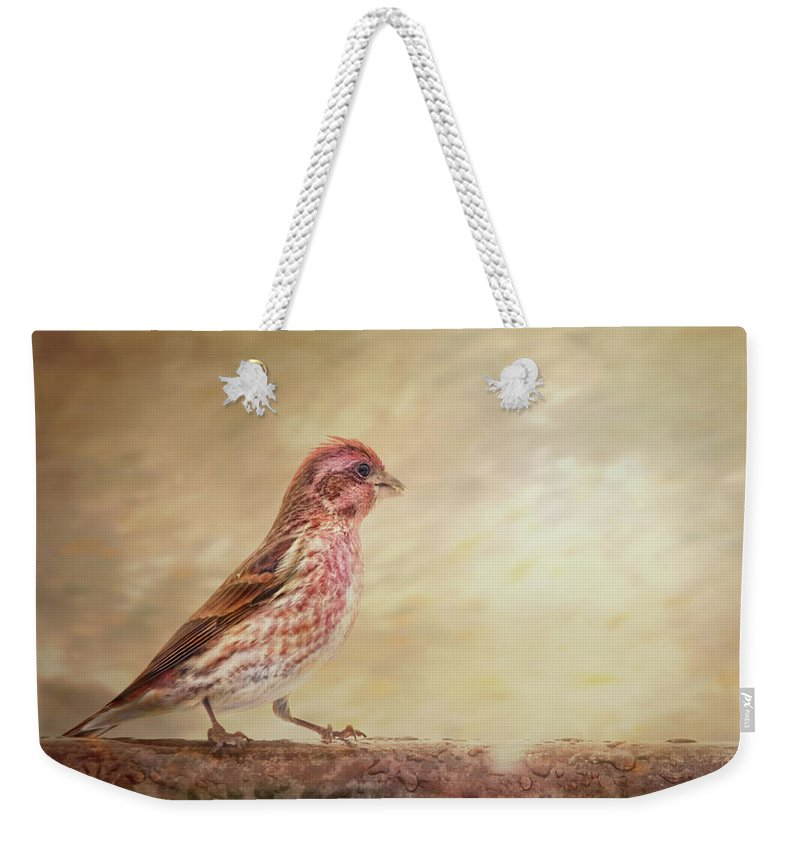Purple Finch Weekender Tote Bag featuring the photograph Purple Finch Walks The Line by Sue Capuano