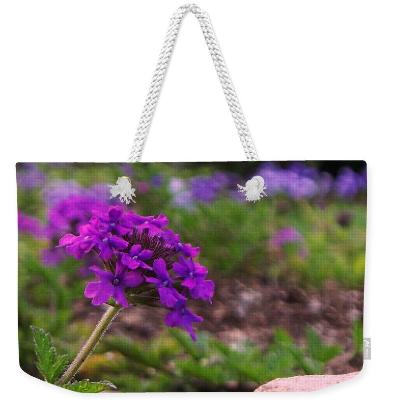 Purple Weekender Tote Bag featuring the painting Purple Flower by Eric Schiabor
