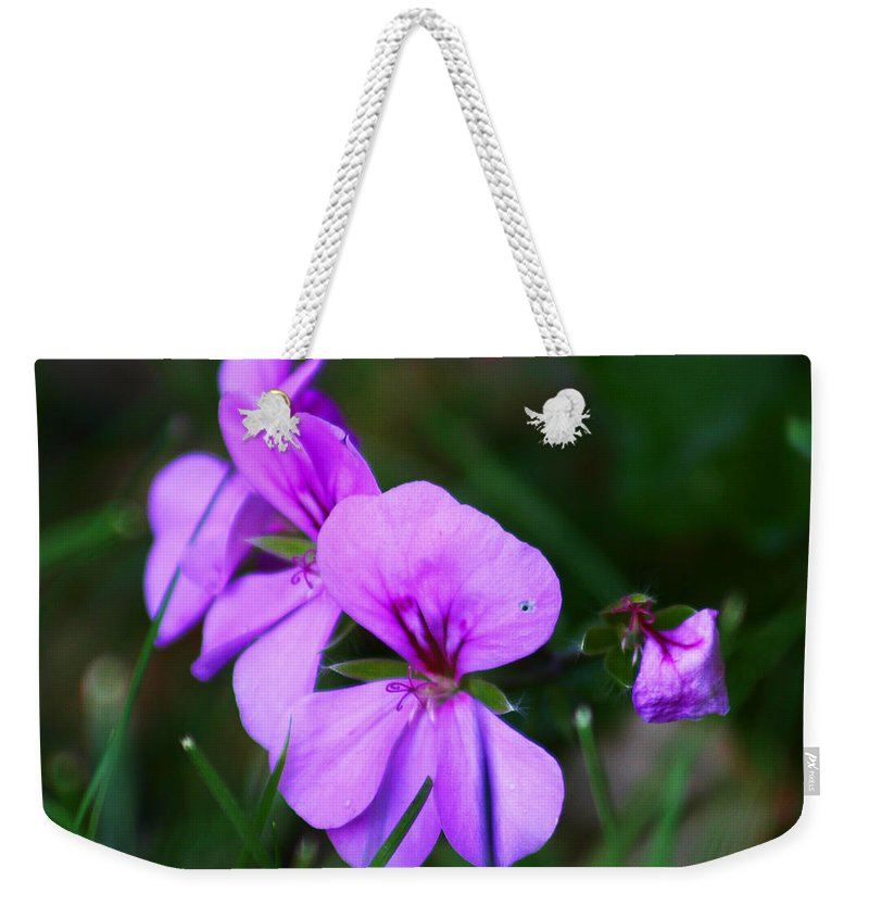 Flowers Weekender Tote Bag featuring the photograph Purple Flowers by Anthony Jones