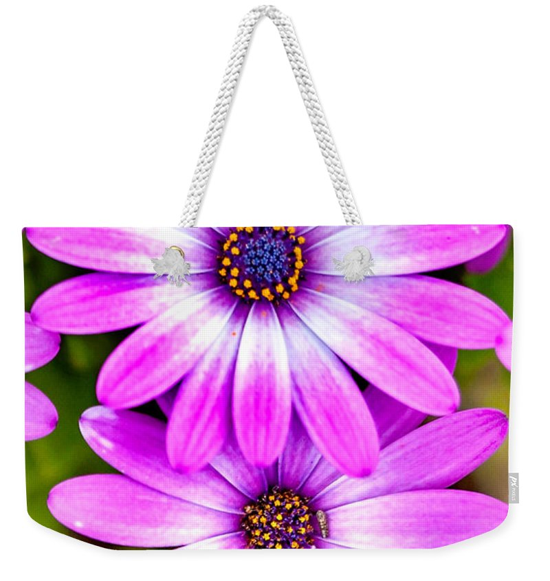 Spring Flowers Weekender Tote Bag featuring the photograph Purple Flowers by Az Jackson